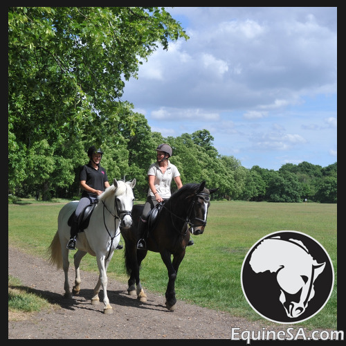 Horse Riding Instructor, London, England